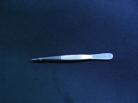 Forceps straight 100mm fine point