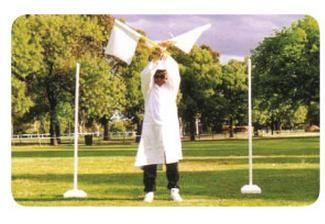 Goal Umpires Flags