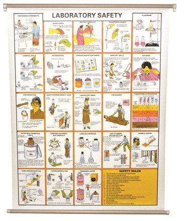 """Chart """"Laboratory Safety"""""""