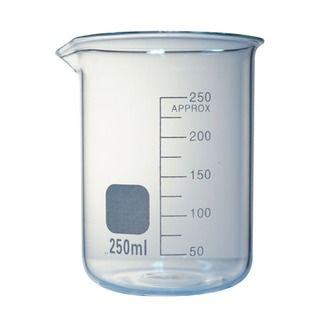 Beaker low form glass 250ml economy