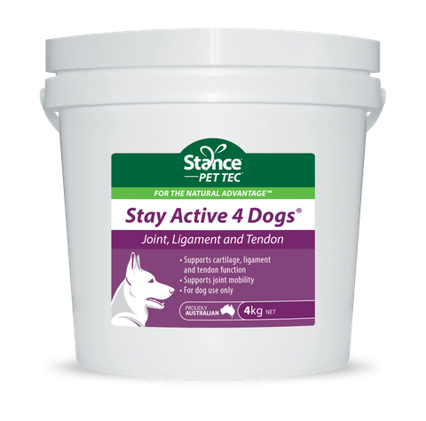Stay Active 4 Dogs