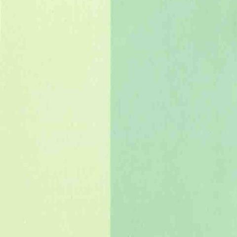 Golden Fluid (118ml) Interference Green (fine)