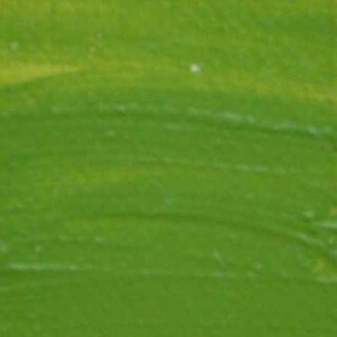Langridge Oil 40ml Cadmium Green