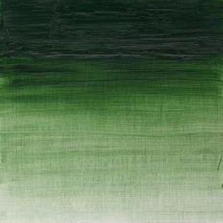 15 - Terre Verte