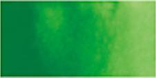 Kuretake Gansai Tambi Pan - SAP GREEN LIGHT