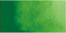Kuretake Gansai Tambi Pan - SAP GREEN