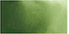 Kuretake Gansai Tambi Pan - OLIVE GREEN