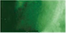 Kuretake Gansai Tambi Pan - SAP GREEN DEEP