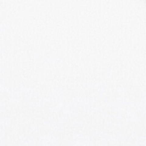 100.5 Titanium White
