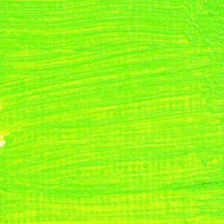 Langridge Oil 40ml Video Green - NEW