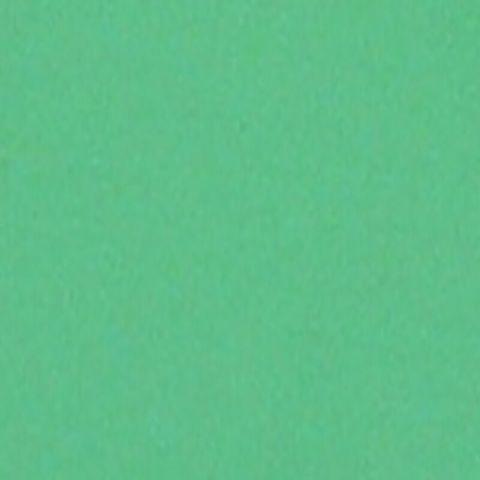 640.5 Permanent Green