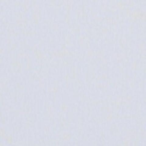 840.8 Paynes Grey Tint