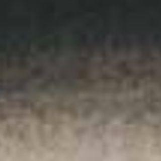 Indian Ink - Sennelier 30ml Ink
