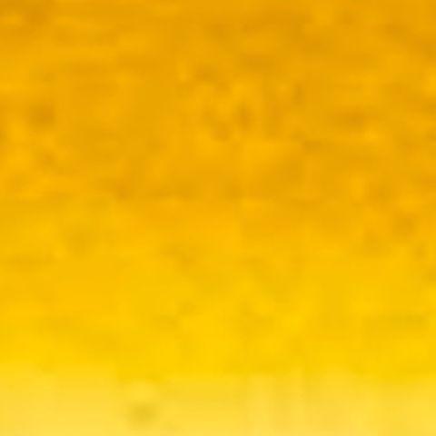 Raw Sienna 223