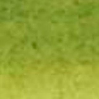 Olive Green 813 - Sennelier 30ml Ink
