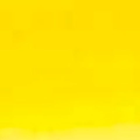 Senegal Yellow 519