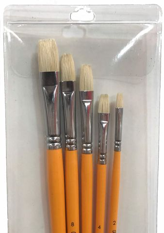 Alesandro Bristle Bright Set 5pcs
