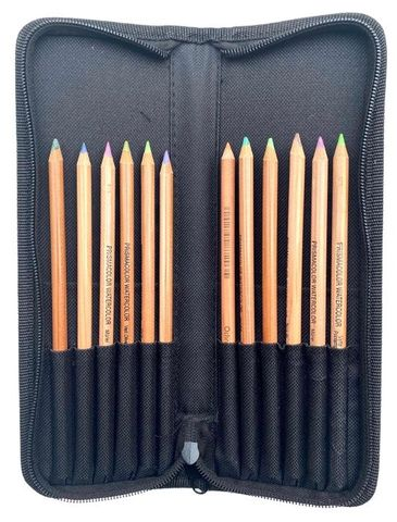 Artist Pencil & Brush Zipper Case holds 12 pencils