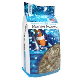 Marine Accents-Lagoon Box 10