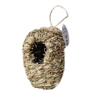 Bird Nest Grassy