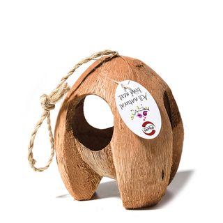 Bird Nest Coconut