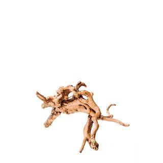 Gold Vine Nano 15cm