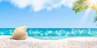 Hermit Beach 3 Sizes