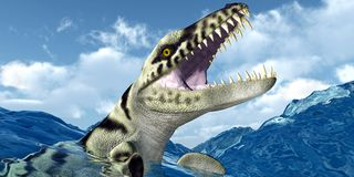 Dakosaurus 3 Sizes