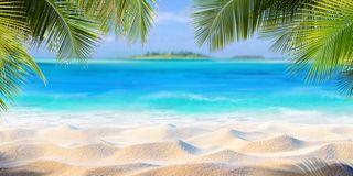 Hermit Paradise 3 Sizes