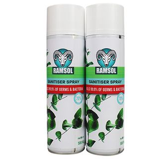 Spray Sanitiser 500ml Aerosol