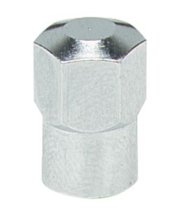 valve cap metal hex type (100)