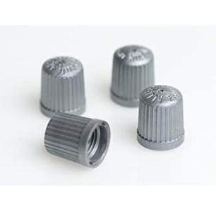 TPMS plastic valve cap grey (100)