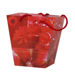 FLORIST MYSTIQUE BAG 185(H)x120(W)x110(G)mm RED-PACK OF 10