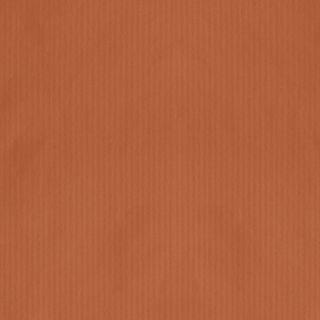 MINI ROLL RIB KRAFT ORANGE 200mm x 50M