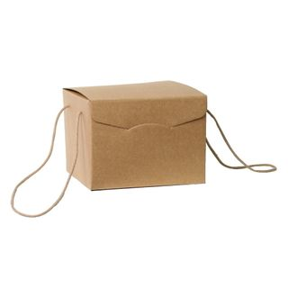 BROWN BOX WITH ROPE HANDLE SMALL 245(L) x245(W) x180(H) MM