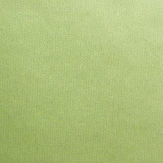RIB KRAFT 700mmx50M PEAR GREEN