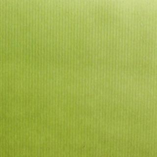 RIB KRAFT 300mmx50M PISTACHIO