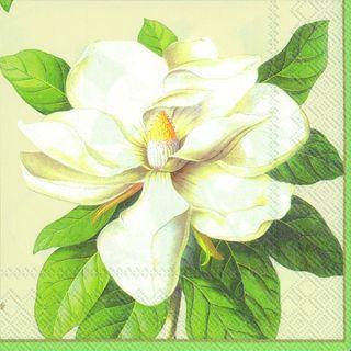 IHR Luncheon Magnolia Cream