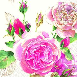IHR Luncheon Tea Rose White