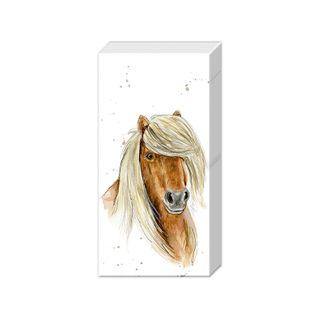 IHR Tissue farm Friends Horse