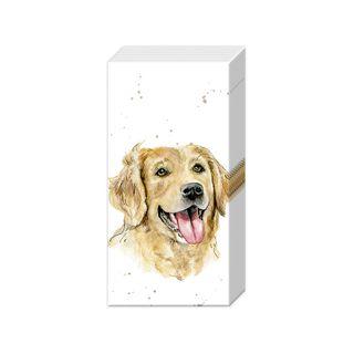 IHR Tissue Farm Friends Dog