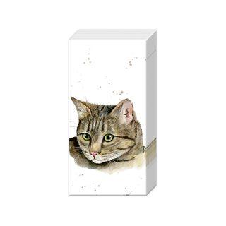 IHR Tissue Farm Friends Cat