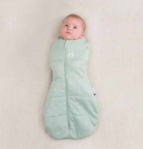 Ergo Pouch Cacoon Swaddle Bag 2.5 Tog Mint