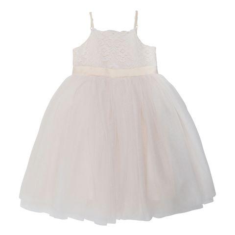 Bebe Ivory Lace Bodice Dress Champagne