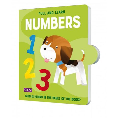 Pull and Learn Numbers Book