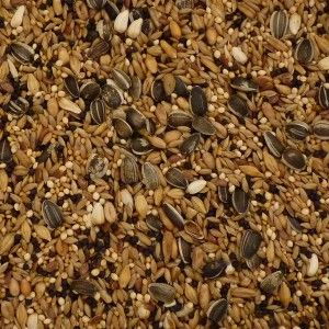 Seed Aviary Mix 2kg