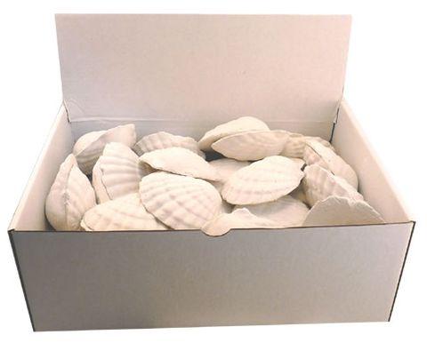 Oxy Shells