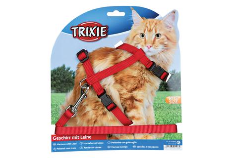 Cat Harness & Lead Big Cat