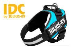 Julius K9 Powerharness Aquamarine