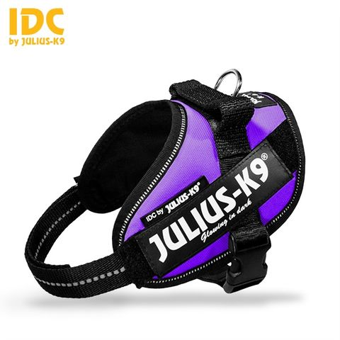 Julius K9 Powerharness Purple
